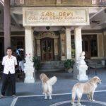 バリ島 シルバーアクセ SARI DEWI・アタBALI HANDY|2013年9月